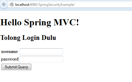 springsecurity login